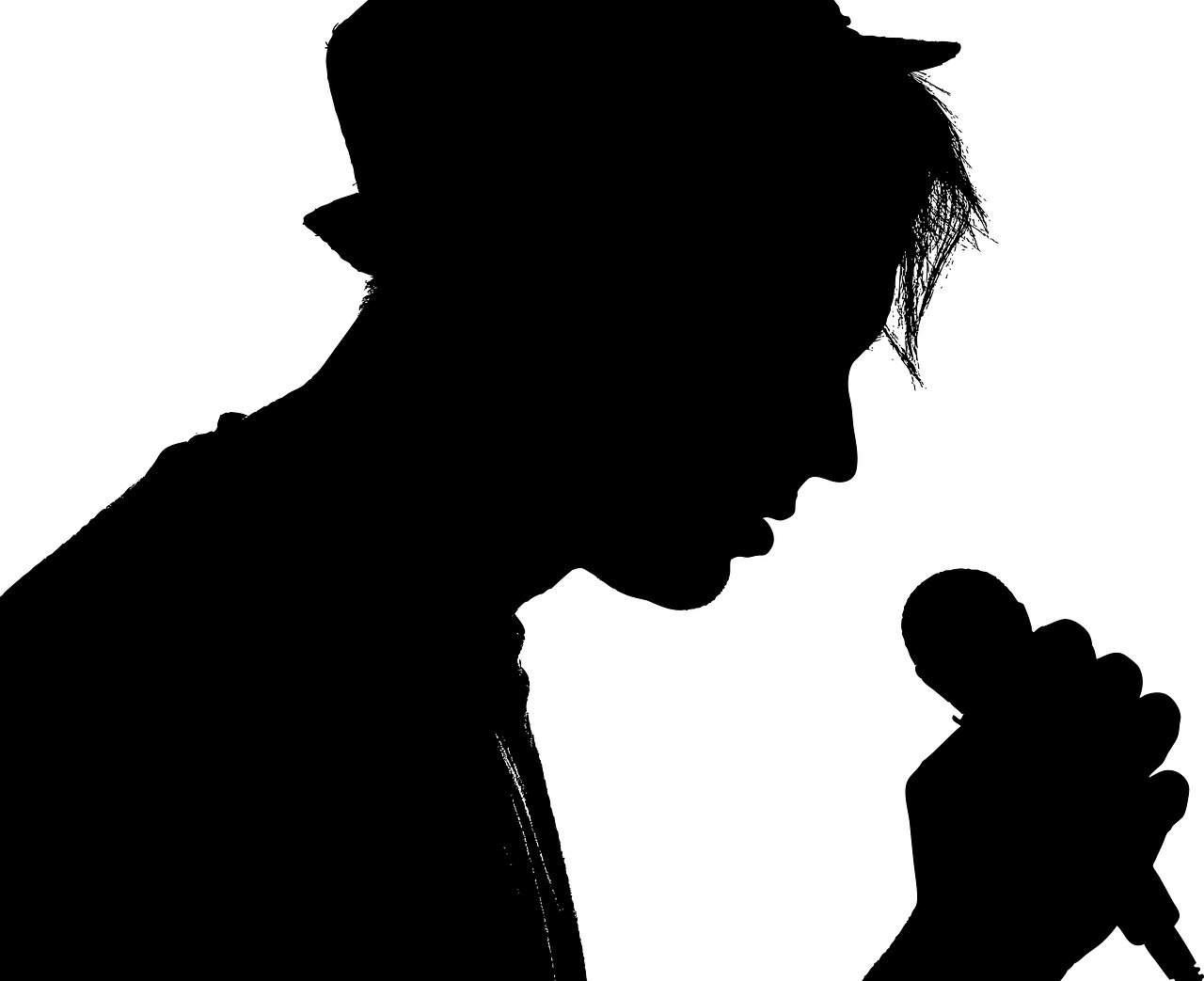 זמר שר
